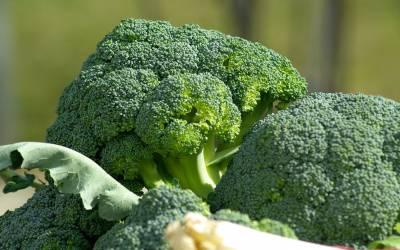 İbrahim Saraçoğlundan Mide Ağrısına Karşı Brokoli Kürü