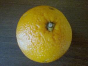 limon resmi